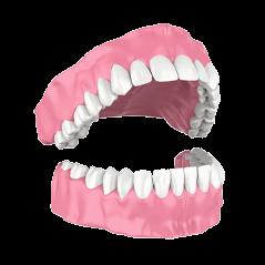 illustration of dentures